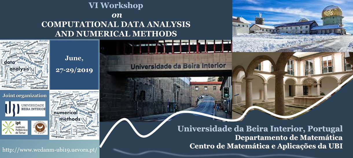 VI Workshop on Computational Data Analysis and Numerical Methods